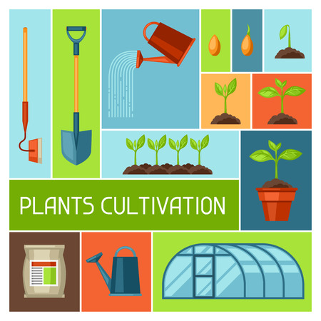fertilizers: Background with agriculture objects. Instruments for cultivation, plants seedling process, stage plant growth, fertilizers and greenhouse.
