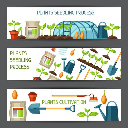 pflanzen: Banner für den Anbau, Pflanzen Sämling Prozess, Stadium des Pflanzenwachstums, Düngemitteln und Gewächshaus. Illustration
