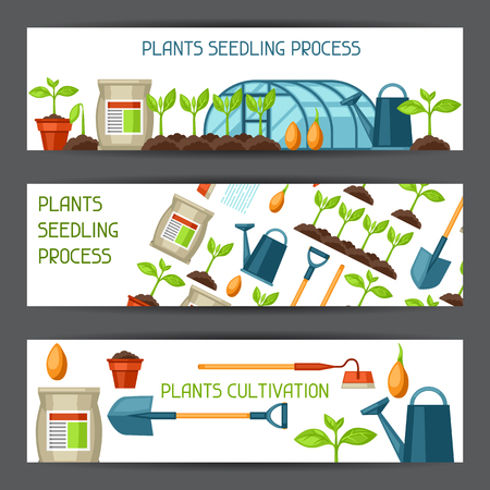 plants growing: Banners for cultivation, plants seedling process, stage plant growth, fertilizers and greenhouse. Illustration