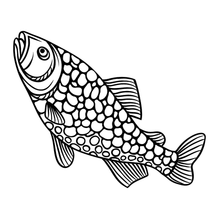 outline drawing of fish: Abstract decorative fish on white background.  Image for design t-shirts, prints, decorations brochures and websites.