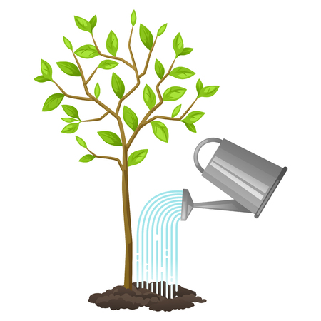 horticulture: Illustration of watering tree from can. Image for agricultural booklets, flyers garden.
