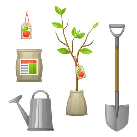 arboles frutales: Conjunto de plántulas de árboles frutales, pala, fertilizantes y regadera. Ilustración para folletos agrícolas, folletos jardín.