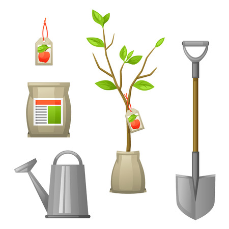 seedlings: Set of seedling fruit tree,shovel, fertilizers and watering can. Illustration for agricultural booklets, flyers garden.