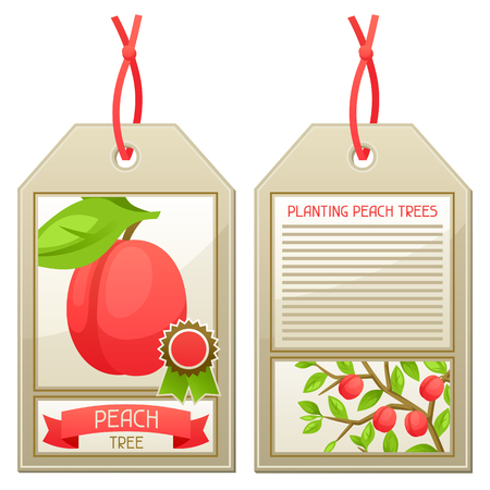 seedlings: Sale tag of seedlings peach trees. Instructions for planting tree.