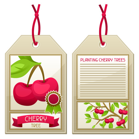 planting tree: Sale tag of seedlings cherry trees. Instructions for planting tree.