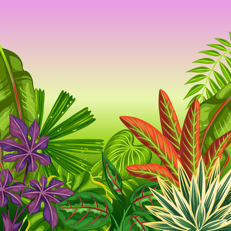 exotic plant: Tropical paradise card with stylized plants and leaves. Image for advertising booklets, banners, flayers. Illustration