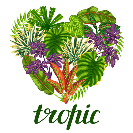 flayers: Tropical paradise card with stylized plants and leaves. Image for advertising booklets, banners, flayers. Illustration