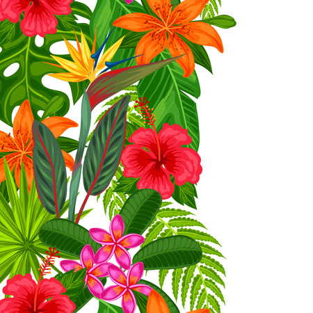 bird of paradise plant: Seamless vertical border with tropical plants, leaves and flowers. Background made without clipping mask. Easy to use for backdrop, textile, wrapping paper.