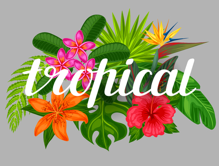 tree design: Background with stylized tropical plants, leaves and flowers. Image for advertising booklets, banners, flayers, cards, textile printing. Illustration