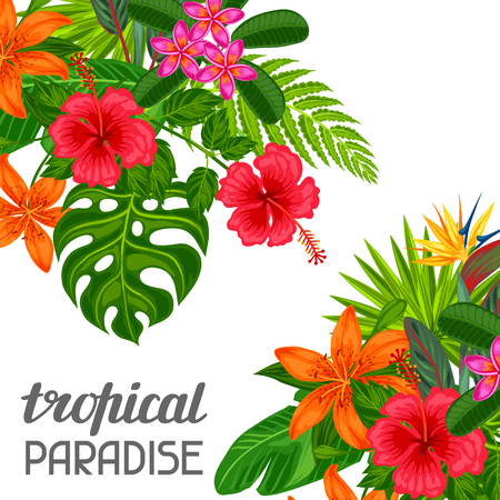 bird of paradise: Tropical paradise card with stylized leaves and flowers. Image for advertising booklets, banners, flayers.