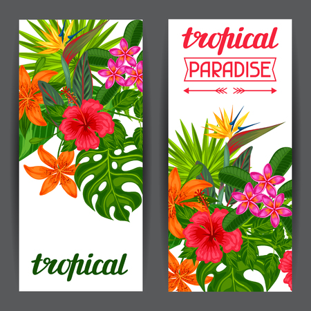 Banners with stylized tropical plants, leaves and flowers. Image for advertising booklets, banners, flayers, cards. Vettoriali