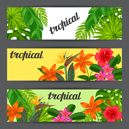 strelitzia: Banners with stylized tropical plants, leaves and flowers. Image for advertising booklets, banners, flayers, cards. Illustration