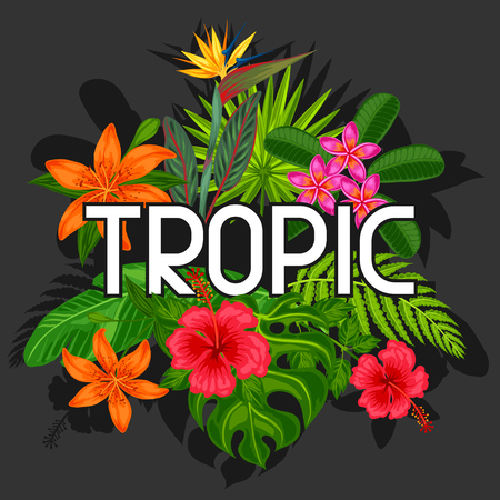 strelitzia: Background with stylized tropical plants, leaves and flowers. Image for advertising booklets, banners, flayers, cards, textile printing. Illustration
