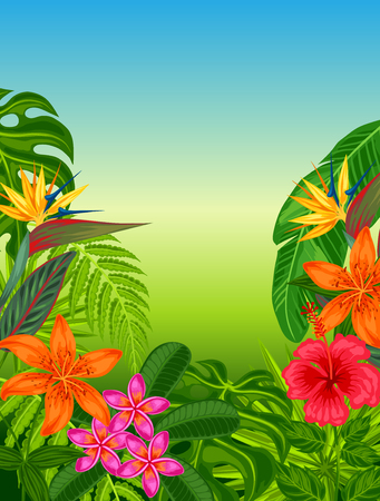 flayers: Background with stylized tropical plants, leaves and flowers. Image for advertising booklets, banners, flayers, cards.