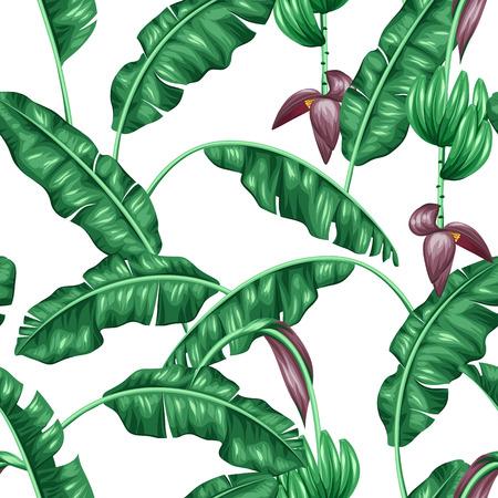 hojas parra: sin patrón, con hojas de plátano. Imagen decorativa de tropicales follaje, flores y frutas. Antecedentes de hecho sin la máscara de recorte. Fácil de usar para el telón de fondo, textiles, papel de envolver.