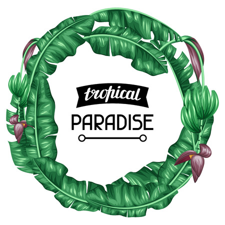 tree design: Frame with banana leaves. Decorative image of tropical foliage, flowers and fruits. Design Image for advertising booklets, banners, flayers, cards.
