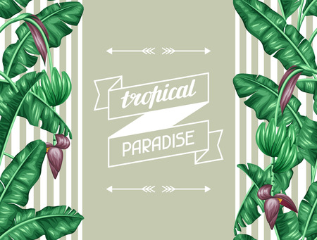 foliage: Seamless pattern with banana leaves. Decorative image of tropical foliage, flowers and fruits. Background made without clipping mask. Easy to use for backdrop, textile, wrapping paper. Illustration