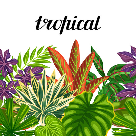 exotic fruit: Seamless horizontal border with tropical plants and leaves. Background made without clipping mask. Easy to use for backdrop, textile, wrapping paper. Illustration
