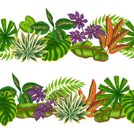 borders plants: Seamless borders with tropical plants and leaves. Background made without clipping mask. Easy to use for backdrop, textile, wrapping paper. Illustration