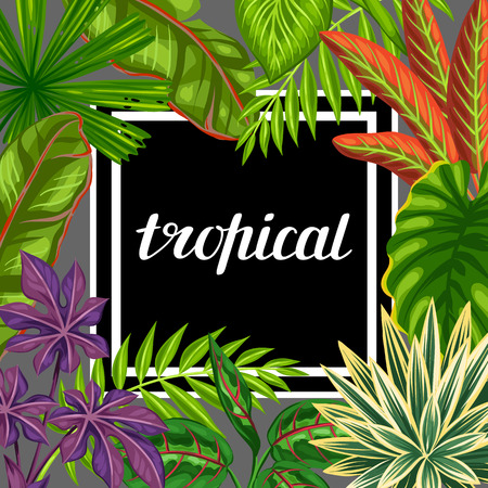 tropical plants: Tropical paradise card with stylized plants and leaves. Image for advertising booklets, banners, flayers. Illustration
