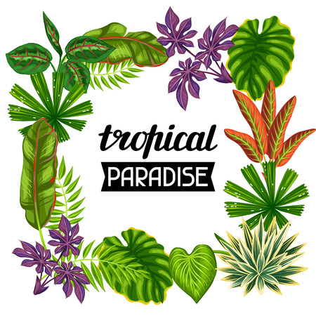 flayers: Frame with tropical plants and leaves. Image for advertising booklets, banners, flayers.