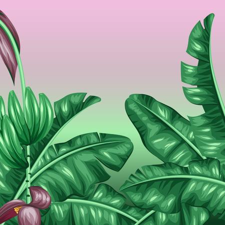 背景にバナナを葉します。熱帯植物、花およびフルーツの装飾的なイメージ。小冊子広告、バナー、flayers、カードのデザインします。