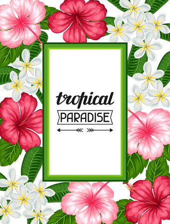 fiori di ibisco: Frame with tropical flowers hibiscus and plumeria. Image for holiday invitations, greeting cards, posters.