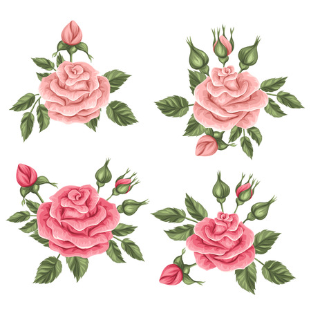 floral objects: Floral elements with vintage roses. Decorative retro flowers. Objects for decoration wedding invitations, romantic cards. Illustration