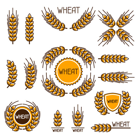decoration objects: Design elements with wheat. Agricultural image natural ears of barley or rye. Objects for decoration bread packaging, beer labels.