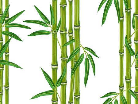 bambou: Seamless avec des plantes de bambou et de feuilles. Contexte faite sans masque d'écrêtage. Facile à utiliser pour toile de fond, le textile, le papier d'emballage.