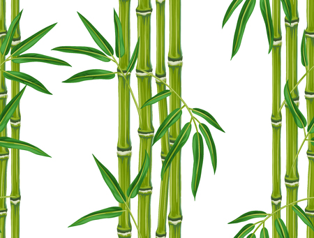 bamboo: Seamless pattern with bamboo plants and leaves. Background made without clipping mask. Easy to use for backdrop, textile, wrapping paper. Illustration