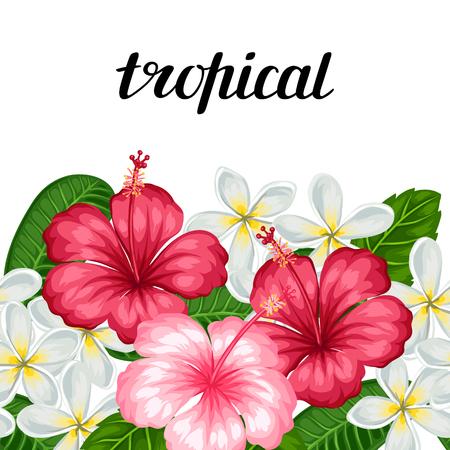 Confine senza soluzione di continuità con fiori tropicali ibisco e plumeria. Sfondo realizzato senza maschera di ritaglio. Facile da usare per fondali, tessuti, carta da imballaggio.