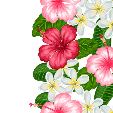 pink plumeria: Seamless border with tropical flowers hibiscus and plumeria. Background made without clipping mask. Easy to use for backdrop, textile, wrapping paper. Illustration