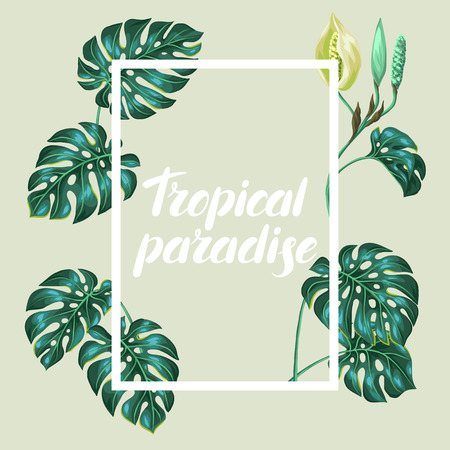 palm: Frame with monstera leaves. Decorative image of tropical foliage and flower. Design for advertising booklets, banners, flayers, cards. Illustration