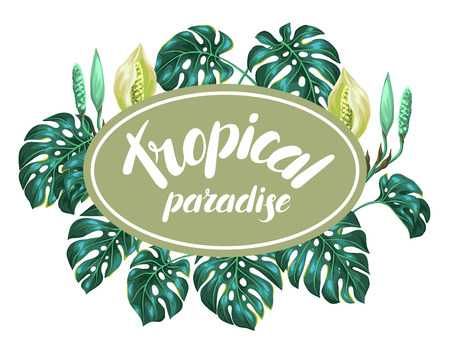 liana: Background with monstera leaves. Decorative image of tropical foliage and flower. Design for advertising booklets, banners, flayers, cards.