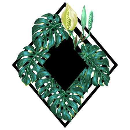 tropical plants: Background with monstera leaves. Decorative image of tropical foliage and flower. Design for advertising booklets, banners, flayers, cards.