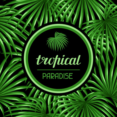 palm trees: Paradise card with palms leaves. Design for advertising booklets, banners, greeting cards and flayers.