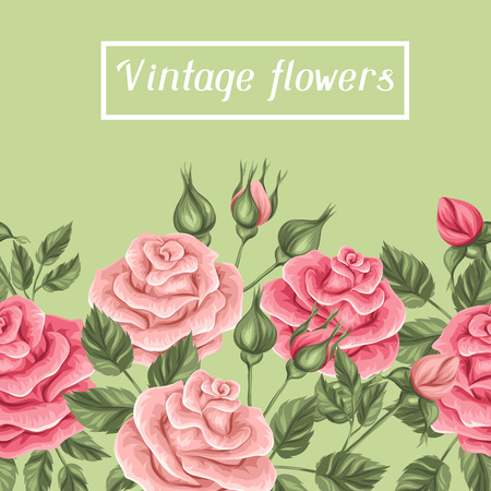 rose garden: Seamless border with vintage roses. Decorative retro flowers. Easy to use for backdrop, textile, wrapping paper. Illustration