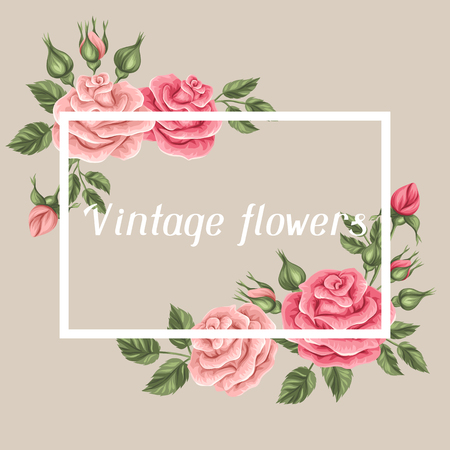 vintage rose: Background with vintage roses. Decorative retro flowers. Image for wedding invitations, romantic cards, booklets. Illustration