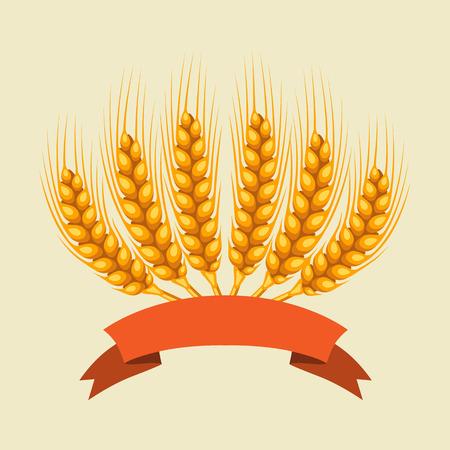 Bouquet de blé, d'orge ou de seigle oreilles. l'image agricole pour l'emballage de pain de décoration, des étiquettes de bière, des brochures et des livrets de publicité. Vecteurs