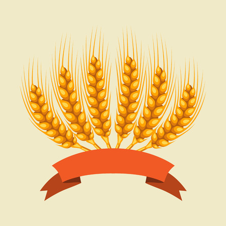 Bunch of wheat, barley or rye ears. Agricultural image for decoration bread packaging, beer labels, brochures and advertising booklets. Vector Illustration