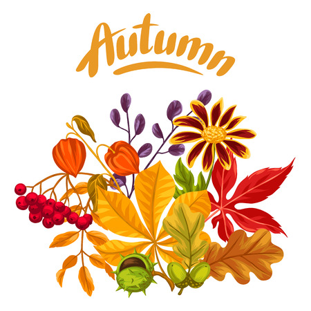 flayers: Card with autumn leaves and plants. Design for advertising booklets, banners, flayers, cards. Illustration