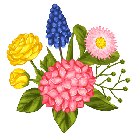 buttercup  decorative: Bouquet with garden flowers. Decorative hortense, ranunculus, muscari and marguerite. Image for wedding invitations, romantic cards, booklets. Illustration