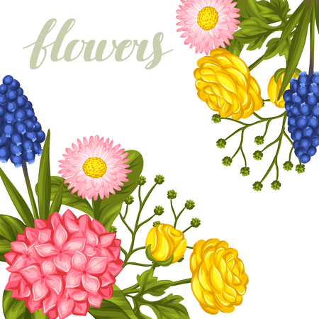 buttercup  decorative: Invitation card with garden flowers. Decorative hortense, ranunculus, muscari and marguerite. Image for wedding invitations, romantic cards, posters. Illustration