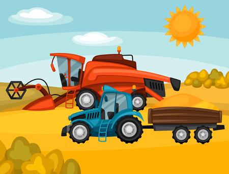combine harvester: Combine harvester and tractor on wheat field. Agricultural illustration farm rural landscape. Illustration