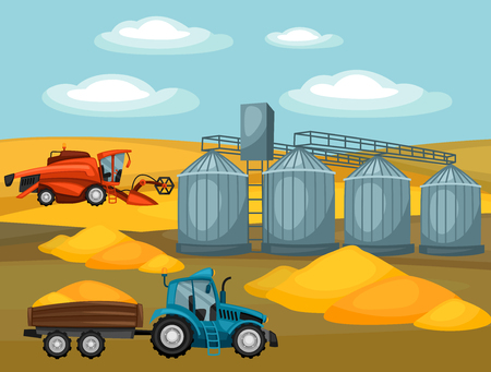 agricultural: Harvesting grain. Combine harvester, tractor and granary. Agricultural illustration farm rural landscape.