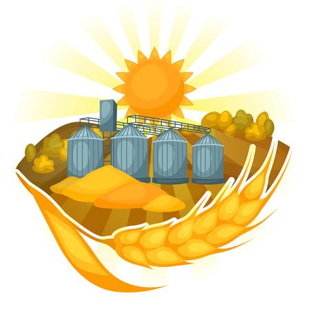 granary: Granary on wheat field. Agricultural illustration farm rural landscape.