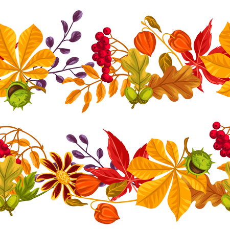 borders plants: Seamless borders with autumn leaves and plants. Background easy to use for backdrop, textile, wrapping paper. Illustration