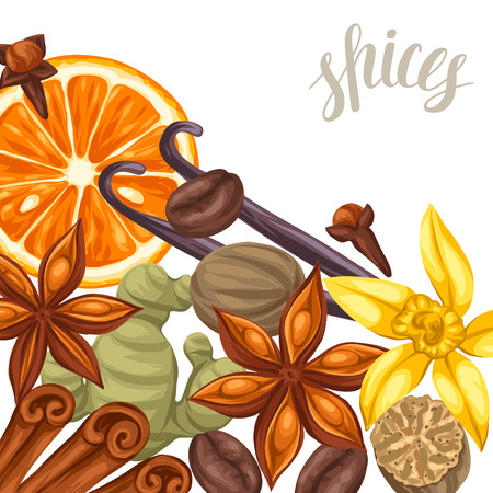 cloves: Background design with various spices. Illustration of anise, cloves, vanilla, ginger and cinnamon.