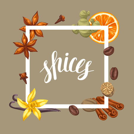 cloves: Frame design with various spices. Illustration of anise, cloves, vanilla, ginger and cinnamon. Illustration